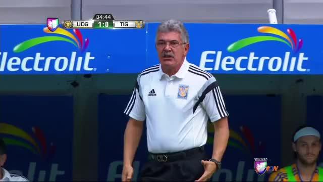 Watch and share Tuca Ferreti GIFs and Futbol GIFs on Gfycat