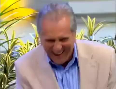 Watch carlos alberto rindo GIF on Gfycat. Discover more alberto, carlos, nossa, praça, sbt GIFs on Gfycat