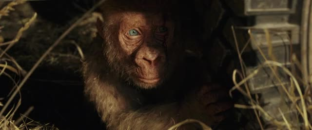 Watch and share Rampage The Movie GIFs and Movie Trailer GIFs by Rampage Movie on Gfycat