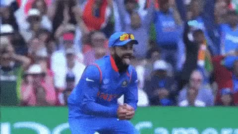 Watch cricket GIF on Gfycat. Discover more cricket GIFs on Gfycat