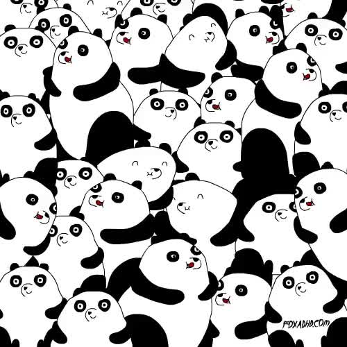 Watch Panda Orgy GIF on Gfycat. Discover more related GIFs on Gfycat