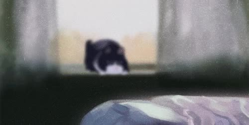 Watch flasher GIF on Gfycat. Discover more related GIFs on Gfycat