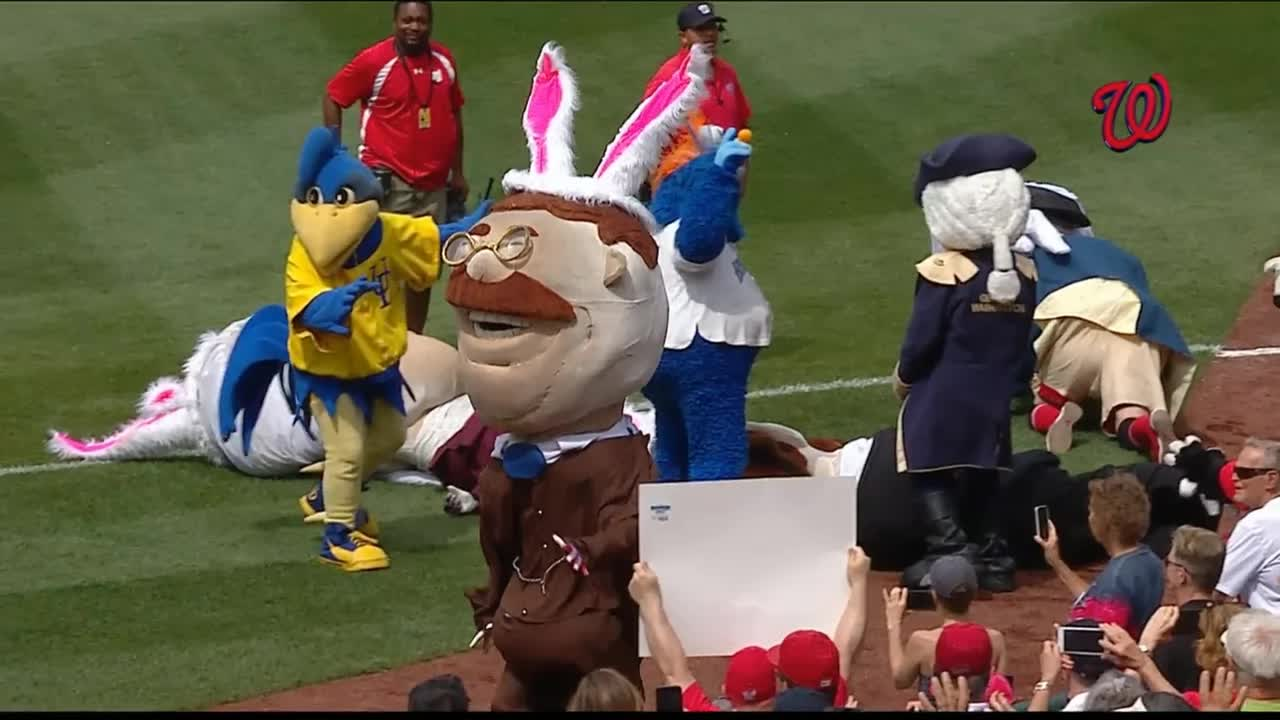 BetterEveryLoop, Getdownmrpresident, nationals, Easter bunny tackles Teddy GIFs