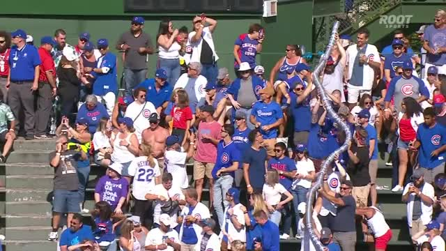 Watch and share Chicago Cubs GIFs by PM_ME_STEAM_K3YS on Gfycat