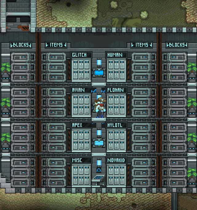 Watch and share Starbound-StorageRoom.gif GIFs on Gfycat