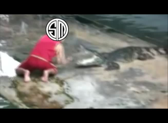 teamsolomid,  GIFs