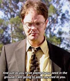 Watch Dwight schrute GIF on Gfycat. Discover more rainn wilson GIFs on Gfycat