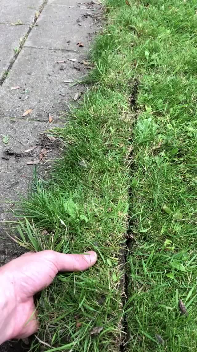 Watch and share Peeling Grass GIFs by ItsMeTaylor on Gfycat