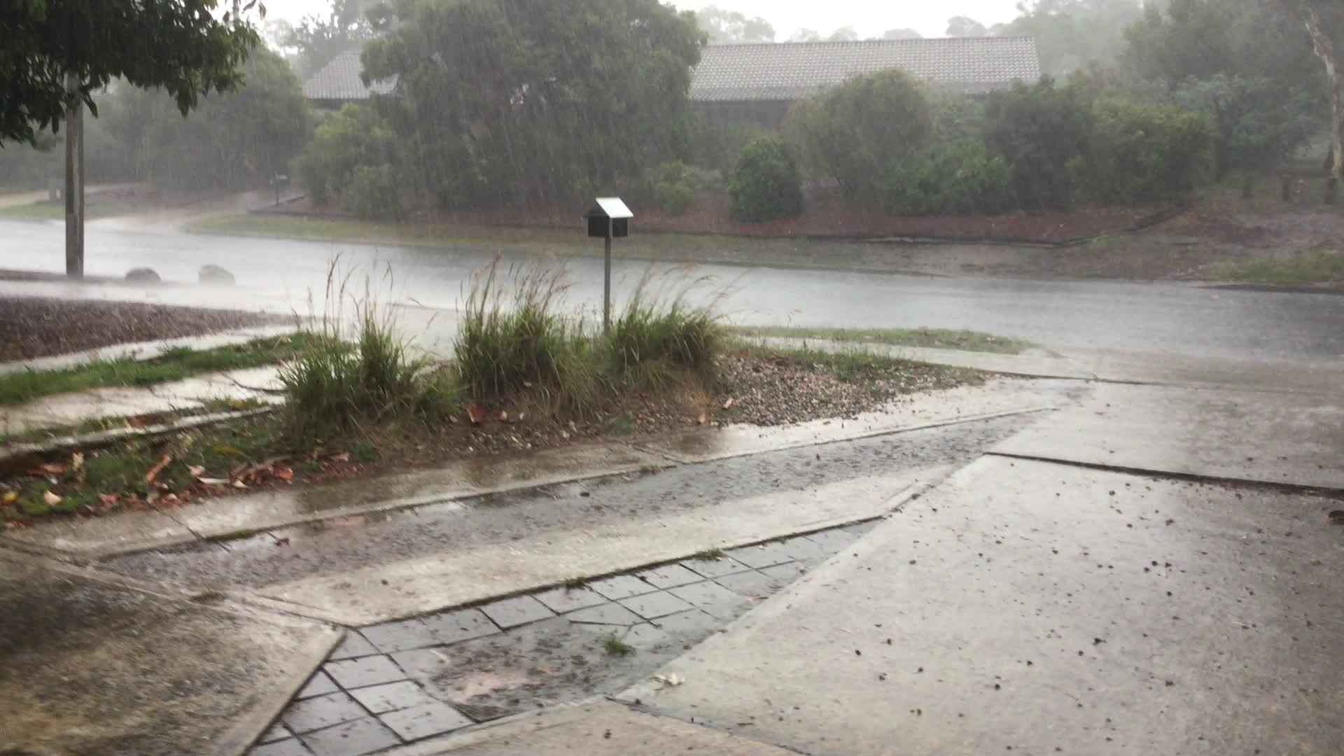 Bit wet here in Canberra GIFs