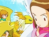 I really wish they had expanded more on this plot, I'm on fire with this whole meme thing, In no particular order, digimon, digimon adventure 02, digimon meme, fuckyeahdigidestined, my gifs, takari, twelve episodes, woo, Digimon Rewatch GIFs