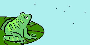 Watch and share Frog GIFs on Gfycat