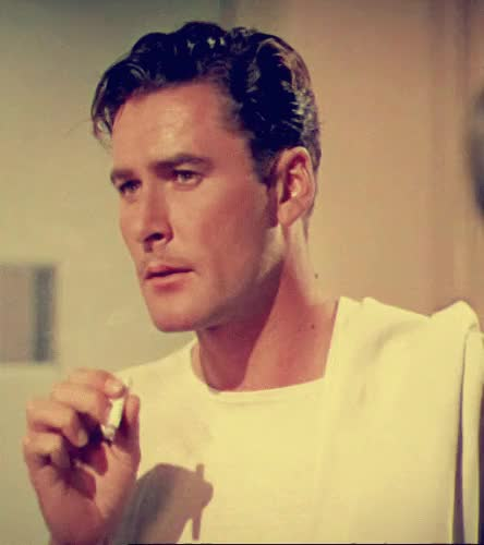 Watch and share Dive Bomber GIFs and Errol Flynn GIFs on Gfycat