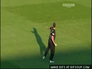 Watch and share Best Cricket GIFs on Gfycat