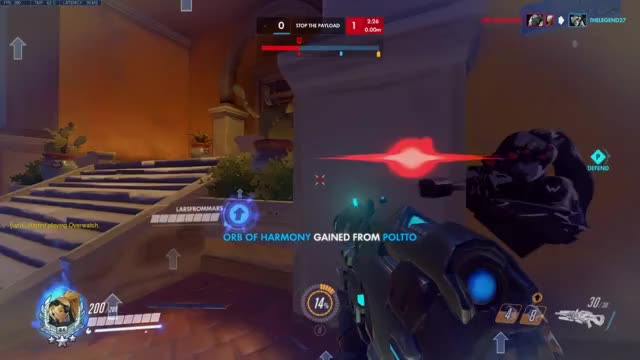 Watch Dorado widow GIF on Gfycat. Discover more related GIFs on Gfycat