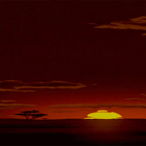 Watch and share Circle Of Life GIFs and The Lion King GIFs on Gfycat