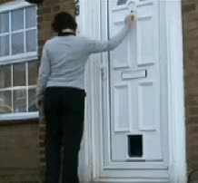 Watch knock on door dog head cat flap knock and run GIF on Gfycat. Discover more related GIFs on Gfycat