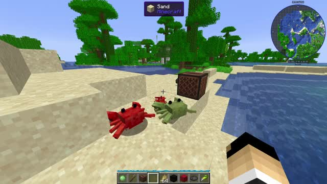 Watch and share Minecraft GIFs and Quark GIFs by Riskable on Gfycat