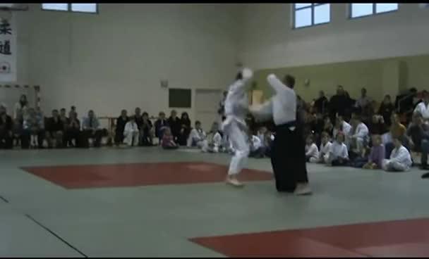 aikido, Aikido GIFs