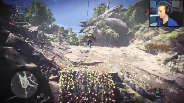 Watch and share Monster Hunter GIFs and Projared Plays GIFs by DivineBrother on Gfycat