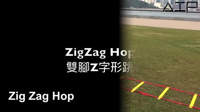 Watch and share Agility Ladder Drills 32 Variations For Better Coordination GIFs by mlap28 on Gfycat