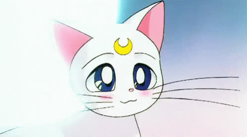 anime, blush, cat, cute, kitty, moon, pet, sailormoon, shy, white, Blushing anime cat GIFs
