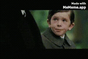 Watch and share Funny GIFs and Aww GIFs by YeetusBoi on Gfycat