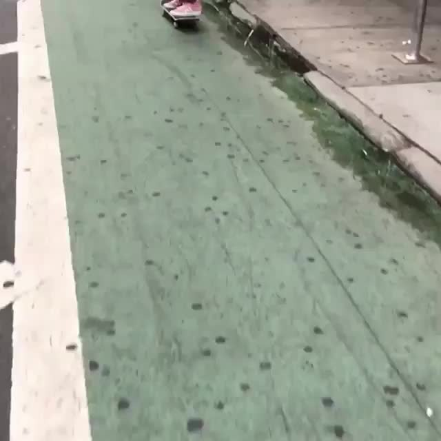 fakie nyc GIFs