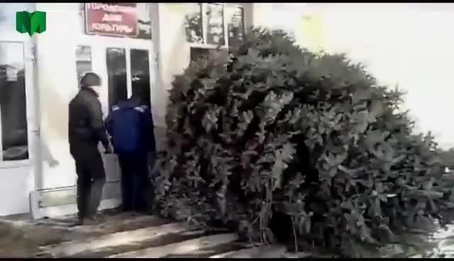 Watch and share Christmass Tree GIFs on Gfycat