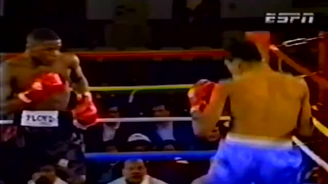 Watch check left hook vs ayala GIF by @walleggy on Gfycat. Discover more related GIFs on Gfycat