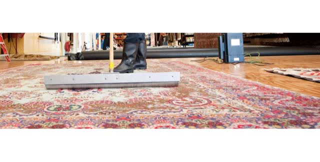 Watch and share Carpet Steam Cleaning Brisbane GIFs by Gill Five Star on Gfycat