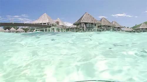Watch and share Cancun GIFs on Gfycat