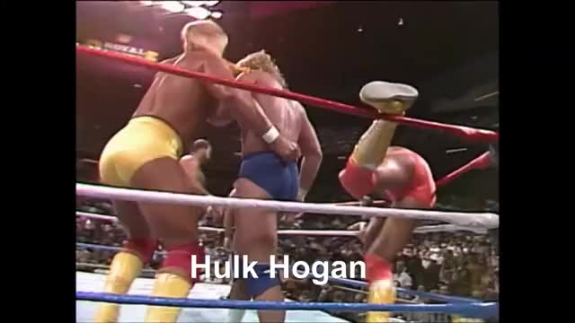 Watch and share Hogan GIFs on Gfycat