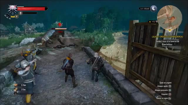 Watch W3_whenistartthegame GIF by @stuckwitch on Gfycat. Discover more randomactsofgaming, witcher, witcher3 GIFs on Gfycat