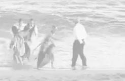 Watch this trending GIF on Gfycat. Discover more Adam Brody, Caleb Nichol, Jimmy Cooper, Kelly Rowan, Mischa Barton, Seth Cohen, Summer Roberts, The O.C., The OC, benjamin mckenzie, julie cooper, julie cooper NICHOL, kirsten cohen, marissa cooper, melinda clarke, peter gallagher, rachel bilson, ryan atwood, sandy cohen, tate donovan GIFs on Gfycat