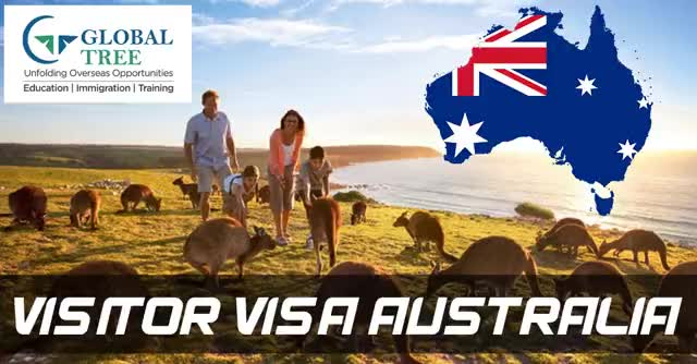 Watch and share Australia Visitor Visa Consultants In India - Global Tree. GIFs by Study Abroad & Immigration on Gfycat