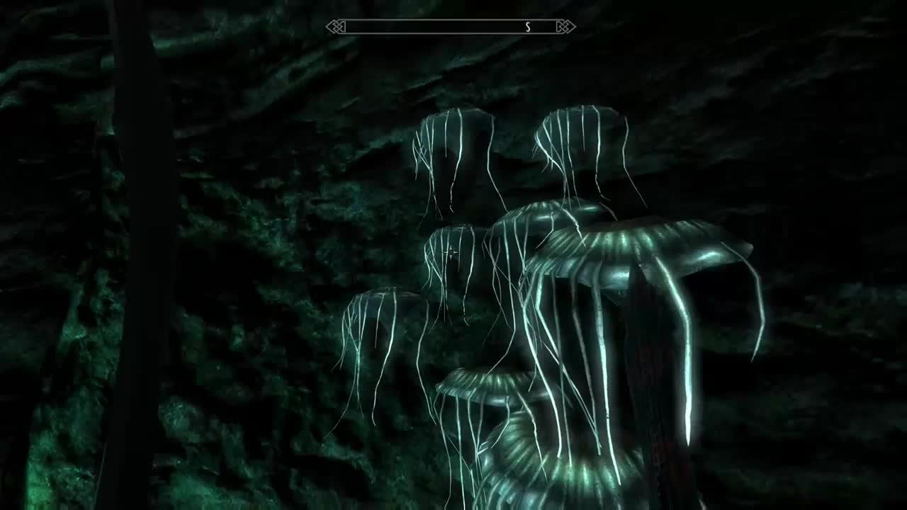 skyrim, the elder scrolls v: skyrim special edition, xbox one, Goddamn Glowing Mushrooms GIFs