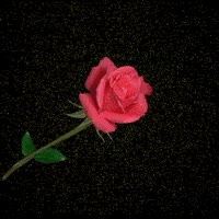 Watch and share Animated-rose-happy-valentine-avatar-greeting-card GIFs on Gfycat