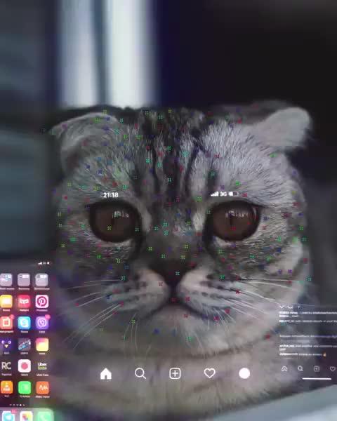 Watch and share Cybercat 2077 GIFs on Gfycat