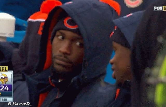 nfl, swordartonline, Well this sums up the Bears game (reddit) GIFs