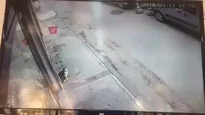 gato hace caer a transeúnte
