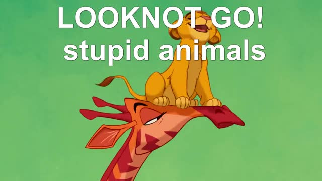 Watch Lion King-Look Not GO GIF on Gfycat. Discover more Animals, King, Lion, The Lion King GIFs on Gfycat
