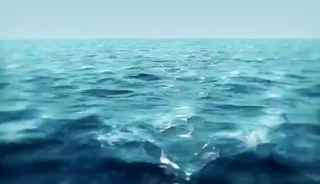 Watch and share 3d Ocean Wave Animation Basic Setting In Maya -HD GIFs on Gfycat
