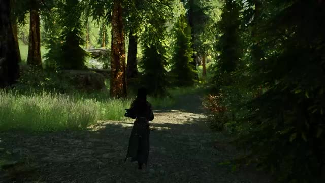 Watch Elder Scrolls V Skyrim - mods GIF by @sasilton on Gfycat. Discover more PC, mods, skyrim GIFs on Gfycat