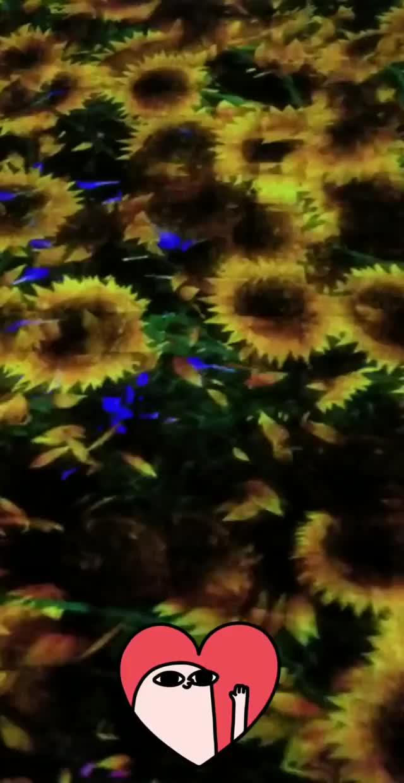 Watch and share Jennalynnmeowri 2018-12-06 01:26:28.993 GIFs by Pams Fruit Jam on Gfycat