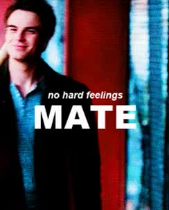 Watch and share Kol Wallpaper Entitled No Hard Feelings Mate But We Are Not Buds GIFs on Gfycat