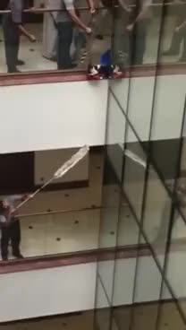 Watch Cat falls from high building GIF on Gfycat. Discover more related GIFs on Gfycat