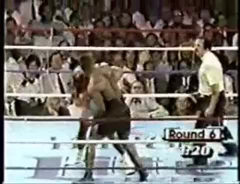 Watch Mike Tyson GIF on Gfycat. Discover more knockout, mike tyson GIFs on Gfycat