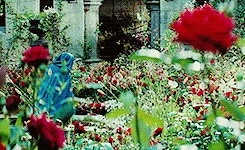 dracula untold, i enjoyed this movie thoroughly, luke evans, lukeevansedit, mine, mine: dracula untold, perioddramaedit, sarah gadon, burned but not buried this time GIFs