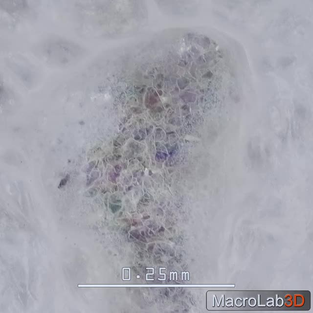 Watch and share Banana For Scale GIFs and Microscope View GIFs by MacroLab3D on Gfycat
