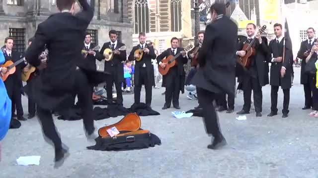 Antunia Live Music from Portugal (reddit) GIF | Find, Make & Share
